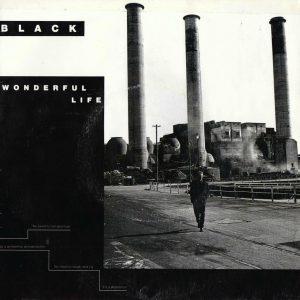 Black, Wonderful Life