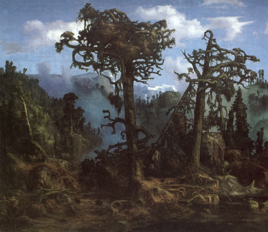 Lars Hertervig, Gamle furutrær