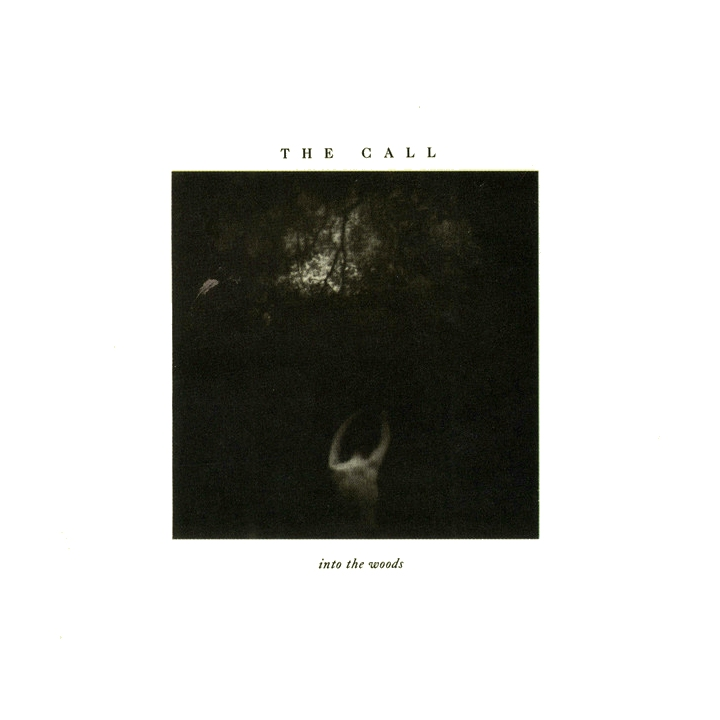 The Call, Into The Woods Elektra, lp 1987