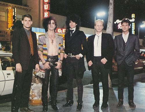Wall of Voodoo, 1985