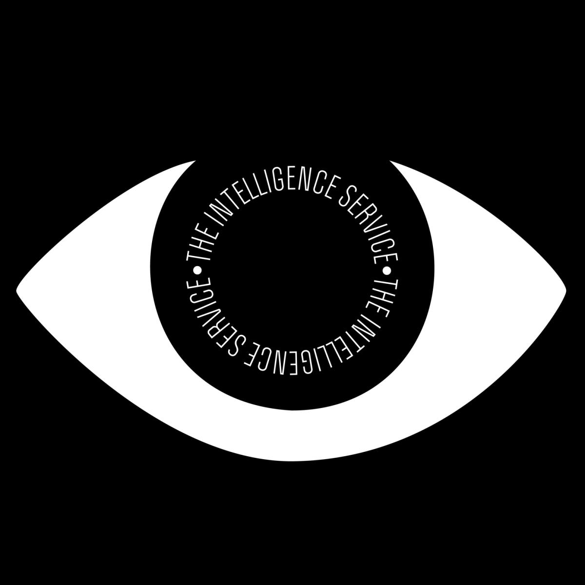 The Intelligence Service, Maladies EP